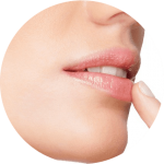 herpes labial zona guide maladie complet