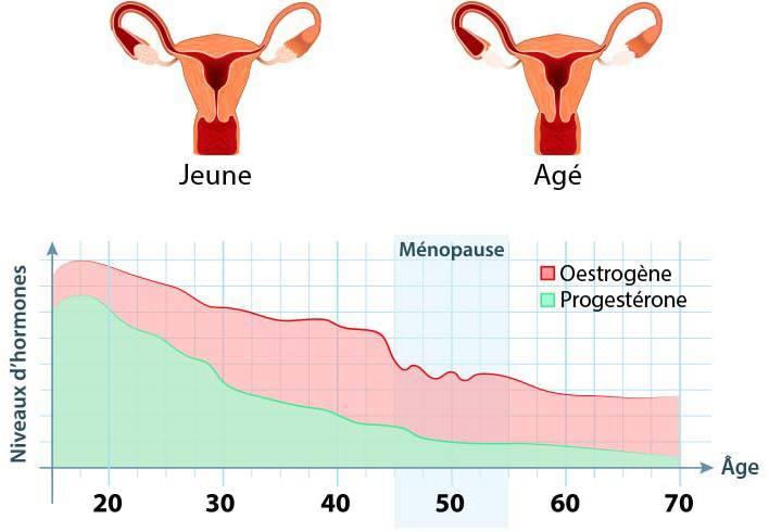 taux d'hormones graphique selon age menopaise