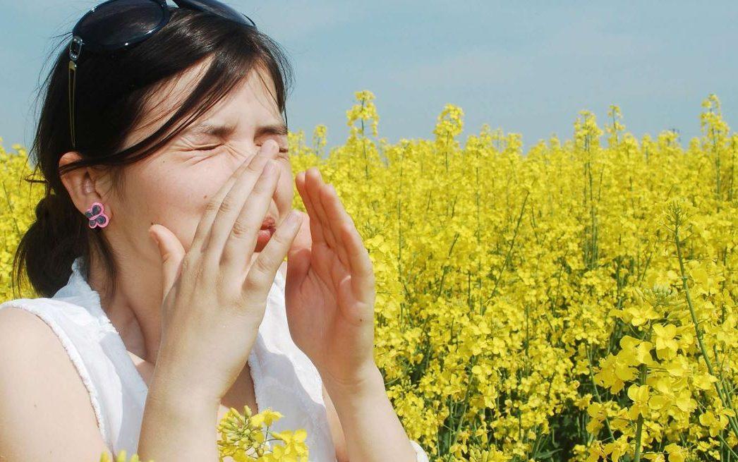 cas d'allergie au pollen