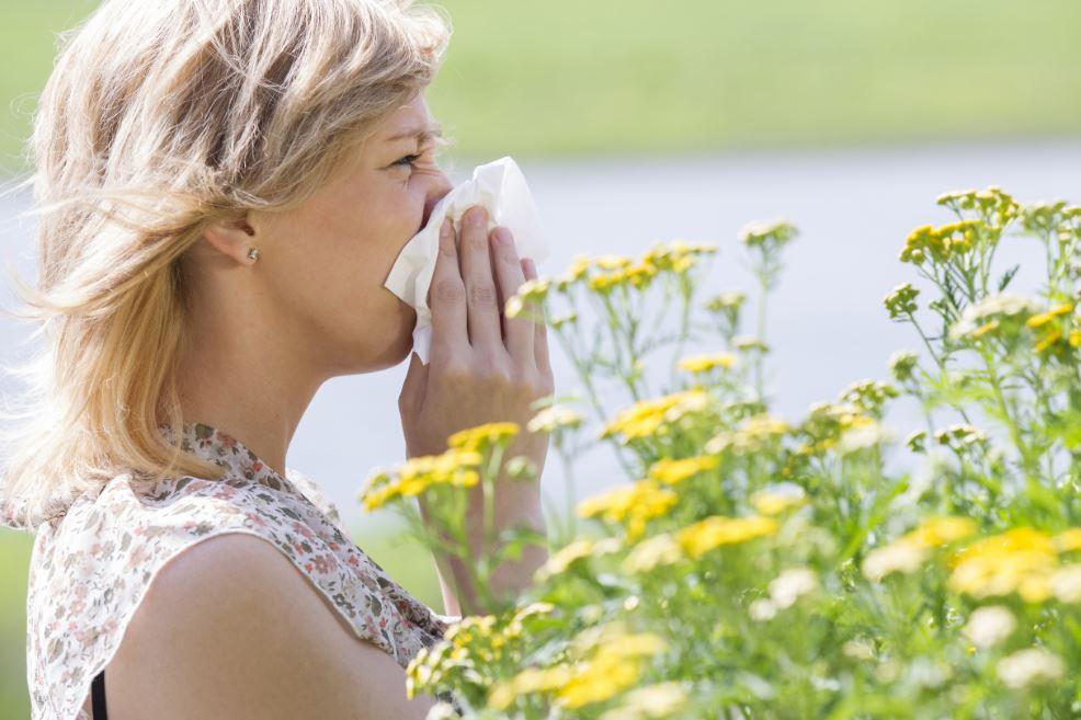 personne atteinte de rhinite allergique