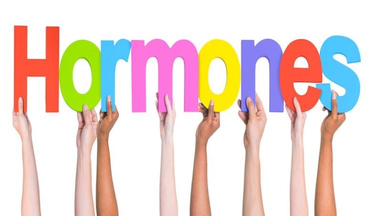 changements hormonaux sont l'une des causes de la cellulite